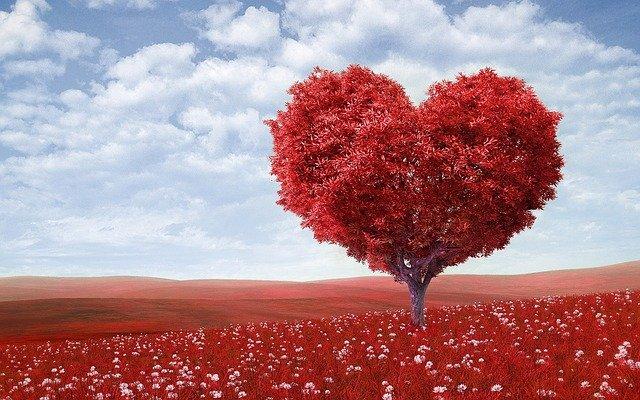 自己受容とは自分を愛するという感覚