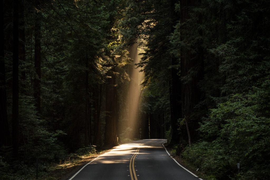 前向きに夢や目標を実現する能力を表す言葉