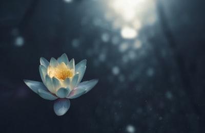 瞑想とはそもそも何なのか?