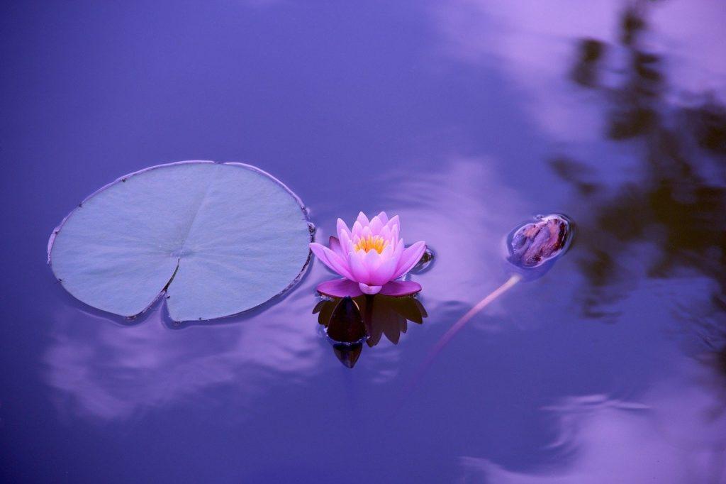 なぜ瞑想が効果的なのか?